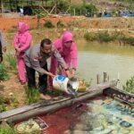 Polres Anambas Panen Raya Ikan