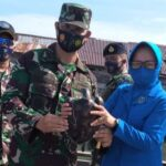 Lanal Simeulue Lepas 74 Tukik Di Pantai Teluk Nibung